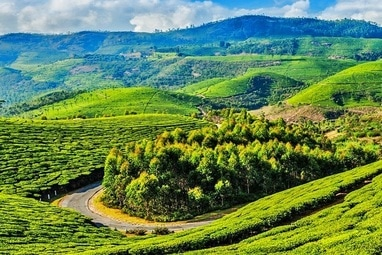 Ooty tour packages from bangalore by bus & Car